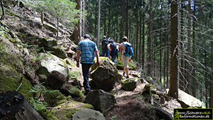Wanderung Renchtal