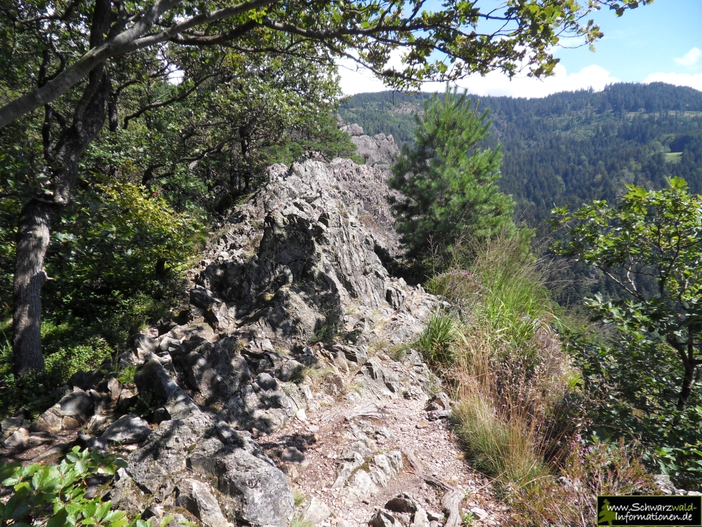 Klettersteig Schwarzwald : Weinbergwanderung calmont klettersteig u abenteuer aktivurlaub