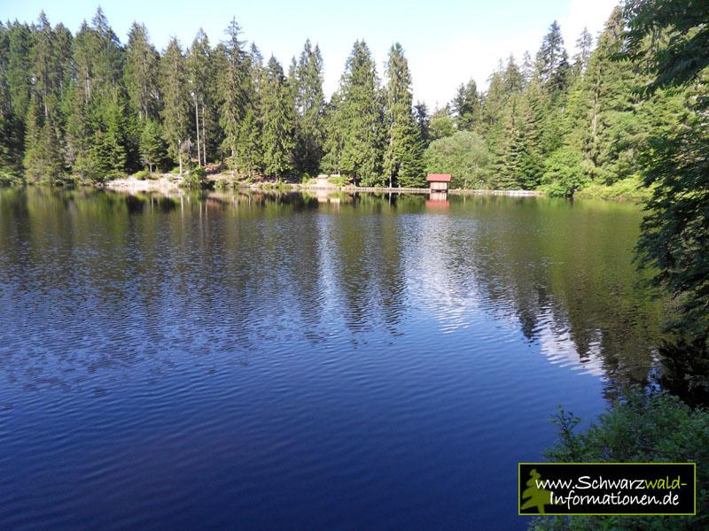 Schwarzwald Baden Baden Nationalpark Wandern Der