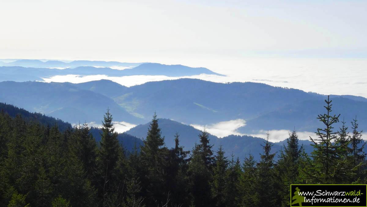 Schwarzwald Aussichtspunkte